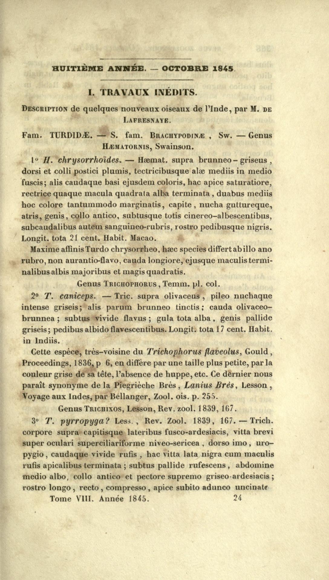 I. Travaux Inedits. Description de Quelques Nouveaux Oiseaux de l'Inde