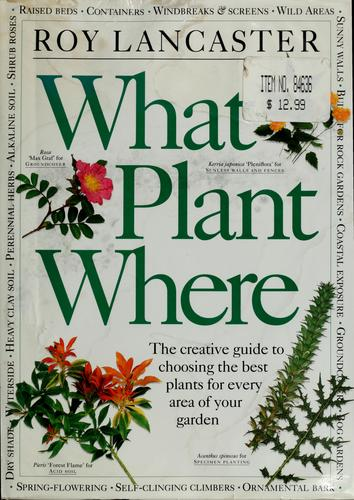 What plant where by Roy Lancaster